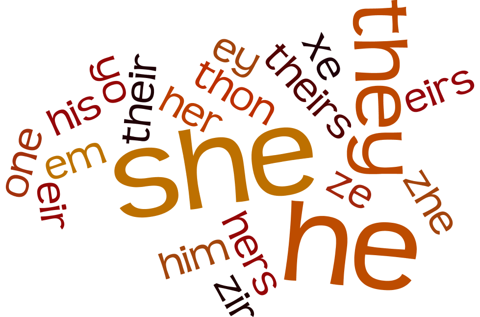 a crash course on pronouns the peak