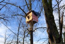 """A treehouse high up with poster on right hand side. Red words on poster: """"Stop Trudeau's Pipeline"""""""